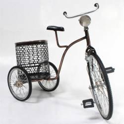 Sepeda Keranjang SYN