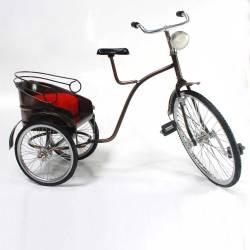 Sepeda Mandarin SYN